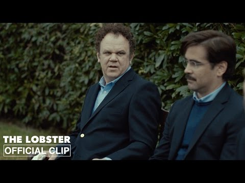 The Lobster | The Fight | Official Clip HD | A24